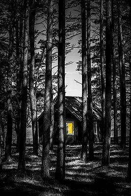 Haus im Wald mit Erleuchtetem Fenster - p248m1463126 von BY