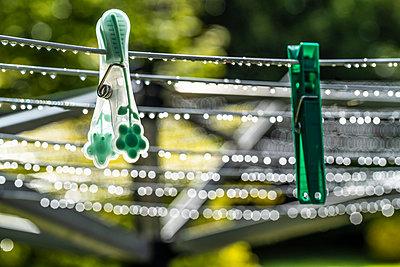 Clothes pegs in the rain - p1082m2288034 by Daniel Allan