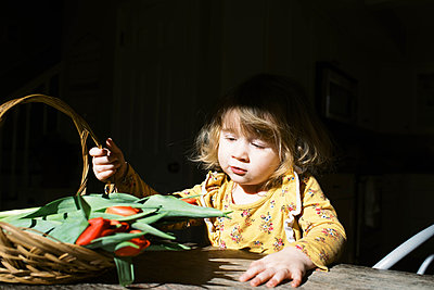 Little two year old girl and her tulips. - p1166m2162819 by Cavan Images