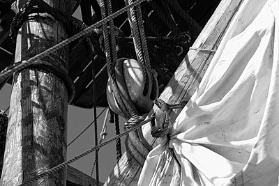 White reefed canvas sails on a tall ship - p1072m1056689 by KuS