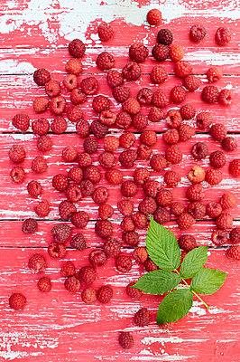 Raspberries and leaf on wood - p300m2028745 by Achim Sass