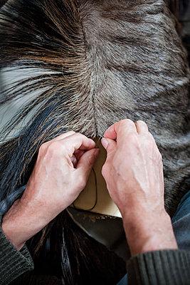 Tierpräparator bei der Arbeit II - p1357m1208091 von Amadeus Waldner