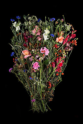 Bunch of  freshly picked wild flowers - p1366m2260594 by anne schubert