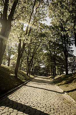 Cobbled path in a park - p1170m2020130 by Bjanka Kadic
