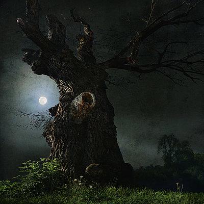 When at Night - p1633m2208837 by Bernd Webler