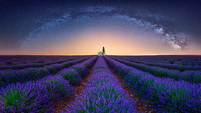 France, Alpes-de-Haute-Provence, Valensole, lavender field under milky way - p300m2023621 by Raul Podadera Sanz