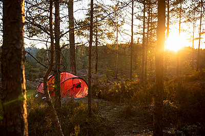 Orange tent near trees in forest during sunset - p426m2186897 by Katja Kircher