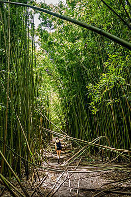 Rear view of woman walking on field amidst trees in forest - p1166m1546093 by Cavan Social