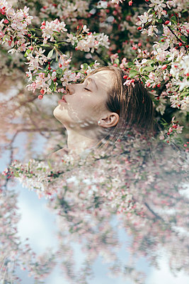 cherry blossoms girl - p1166m2106905 by Cavan Images