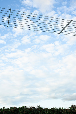 Barbed wire - p1327m2135181 by elenahelfrecht