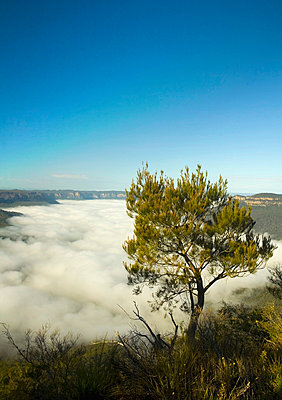 Temperature inversion shown by low lying clouds - p4429765 by John Doornkamp