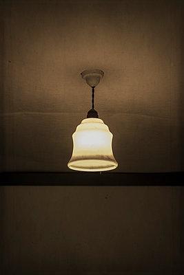 Vintage lamp shade - p1228m1128641 by Benjamin Harte