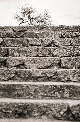 Stone treads on Majorca - p815m1193751 by Erdmenger