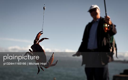 Angler mit einem Hummer - p1324m1165166 von michaelhopf