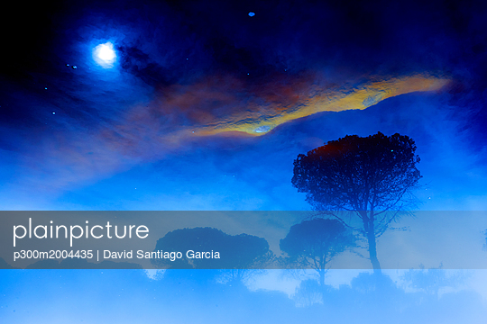 Spain, Andalusia, trees and sky with clouds and moon - p300m2004435 von David Santiago Garcia