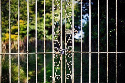 Garden gate - p1057m1060145 by Stephen Shepherd