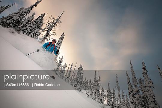 p343m1168361 von Robin Carleton