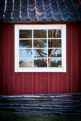 Reflection in window - p312m1024761f by Ellinor Hall