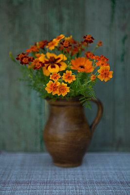 Leuchtendes Orange - p454m739719 von Lubitz + Dorner