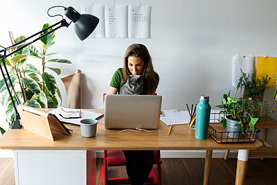 Businesswoman with cat using laptop on desk in home office - p300m2207070 by Valentina Barreto
