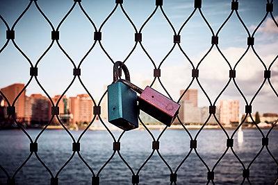 Paddlocks on a fence - p851m2073205 by Lohfink