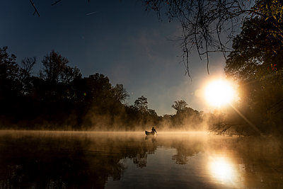Sunrise canoe ride on foggy river. - p1166m2269656 by Cavan Images