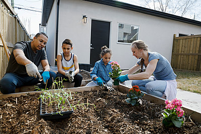 Family planting flowers in sunny garden - p1192m2094601 by Hero Images