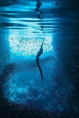 Young woman snorkeling among school of fish underwater, Vava'u, Tonga, Pacific Ocean - p1023m2024465 by Martin Barraud