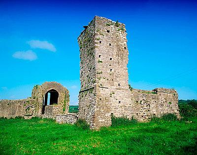 Ballybeg Abbey, 13th century, Buttevant, Co Cork, Ireland - p4429342f by Design Pics