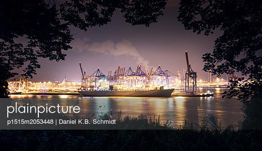 p1515m2053448 by Daniel K.B. Schmidt