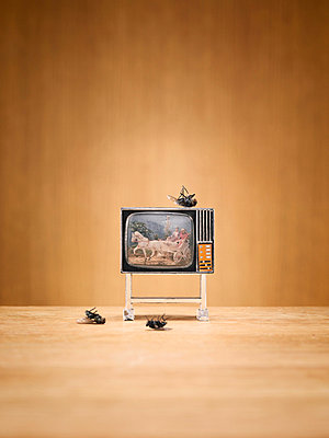 Miniature television and dead flies - p312m710650f by Alexander Crispin
