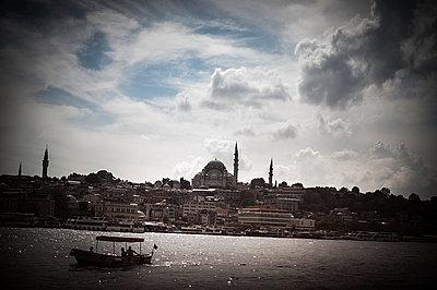 Suleymaniye mosque - p1007m959827 by Tilby Vattard