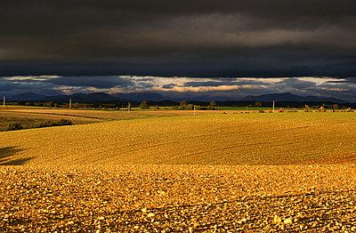 Auf dem Land - p1468m1527632 von Philippe Leroux
