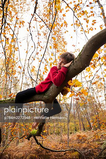 Boy lying on a strong limb - p784m2272948 by Henriette Hermann
