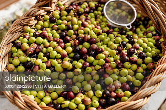 Fresh olives with colander in basket - p300m2242298 by VITTA GALLERY