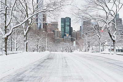 Road in snowy urban park - p924m807181f by Ditto