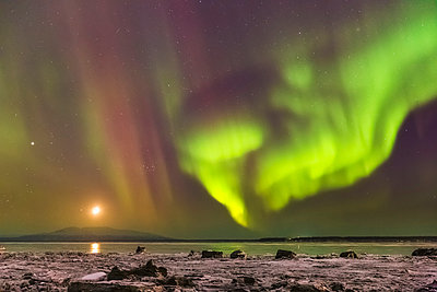 Northern Lights and moon in the sky above the snow covered mudflats of Knik Arm and Mt. Susitna, Winter, Cook Inlet, Southcentral Alaska, USA. - p442m967064 by Kevin Smith