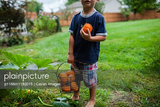 p1166m1183015 von Cavan Images