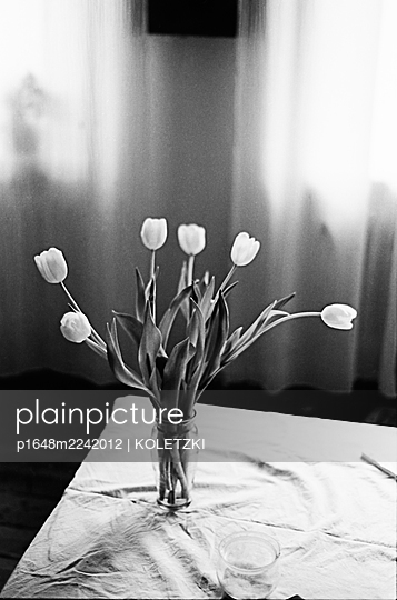 Fresh tulips in the flower vase - p1648m2242012 by KOLETZKI