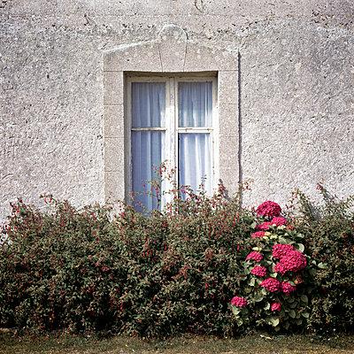 Brittany - p545m817070 by Ulf Philipowski