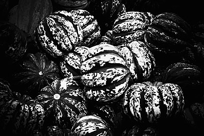 Pumpkins - p1149m1492420 by Yvonne Röder