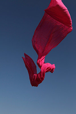 Pink shawl in the air - p8490008 by Eric Zeziola