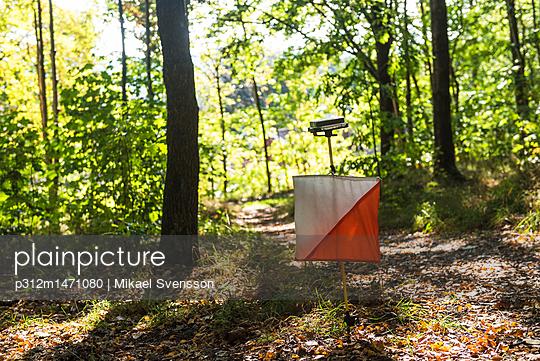 p312m1471080 von Mikael Svensson