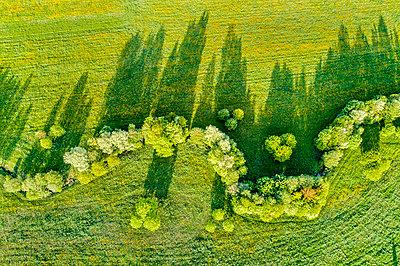 Germany, Baden-Wuerttemberg, Rems-Murr-Kreis, aerial view of meandering brook - p300m1585469 von Stefan Schurr