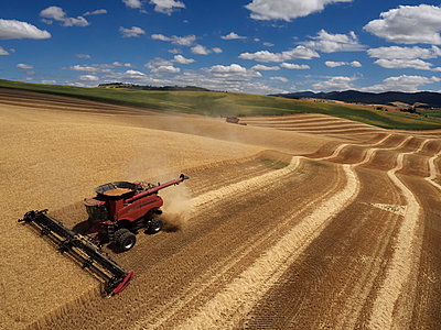 USA, Washington State, Palouse hills, wheat field and combine harvester - p300m1188954 by Cameron Davidson