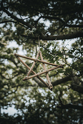 A five-pointed star from bamboo hanging on a branch - p1681m2283594 by Juan Alfonso Solis