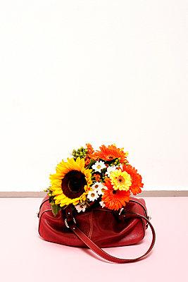 Handtaschenvase - p2370550 von Thordis Rüggeberg