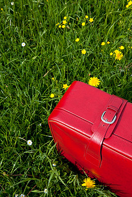 Red suitcase - p4541290 by Lubitz + Dorner