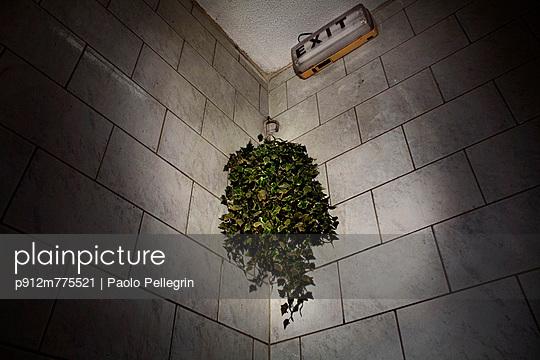 p912m775521 von Paolo Pellegrin