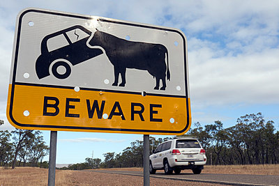 Beware of cows - p1016m792529 by Jochen Knobloch